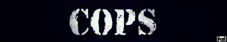 Cops (source: TheTVDB.com)