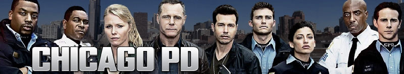 Chicago PD (source: TheTVDB.com)