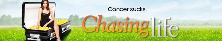 Chasing Life (source: TheTVDB.com)