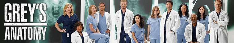 Greys Anatomy (source: TheTVDB.com)