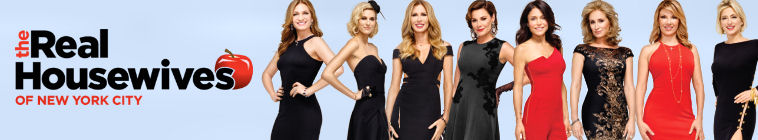 The Real Housewives of New York City (source: TheTVDB.com)