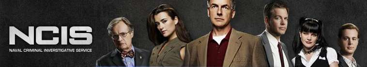 NCIS (source: TheTVDB.com)